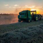 Jak chronić uprawy przed chwastami i szkodnikami